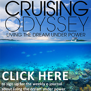 Cruising Odyssey web ad White