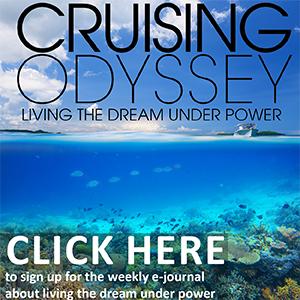 Cruising Odyssey web ad White