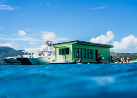 First Floating Taco Bar in Caribbean Opens in St. John; Will Deliver to Boats Nearby